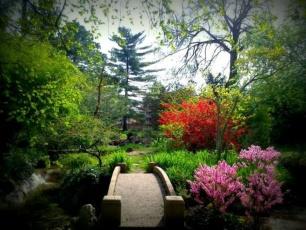 Japánkert a Médiában